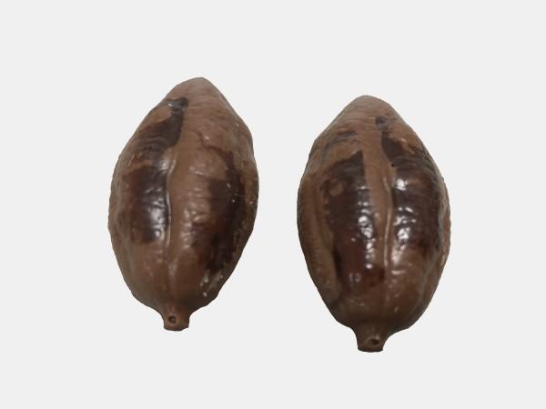 Cacaoboon Bonbons